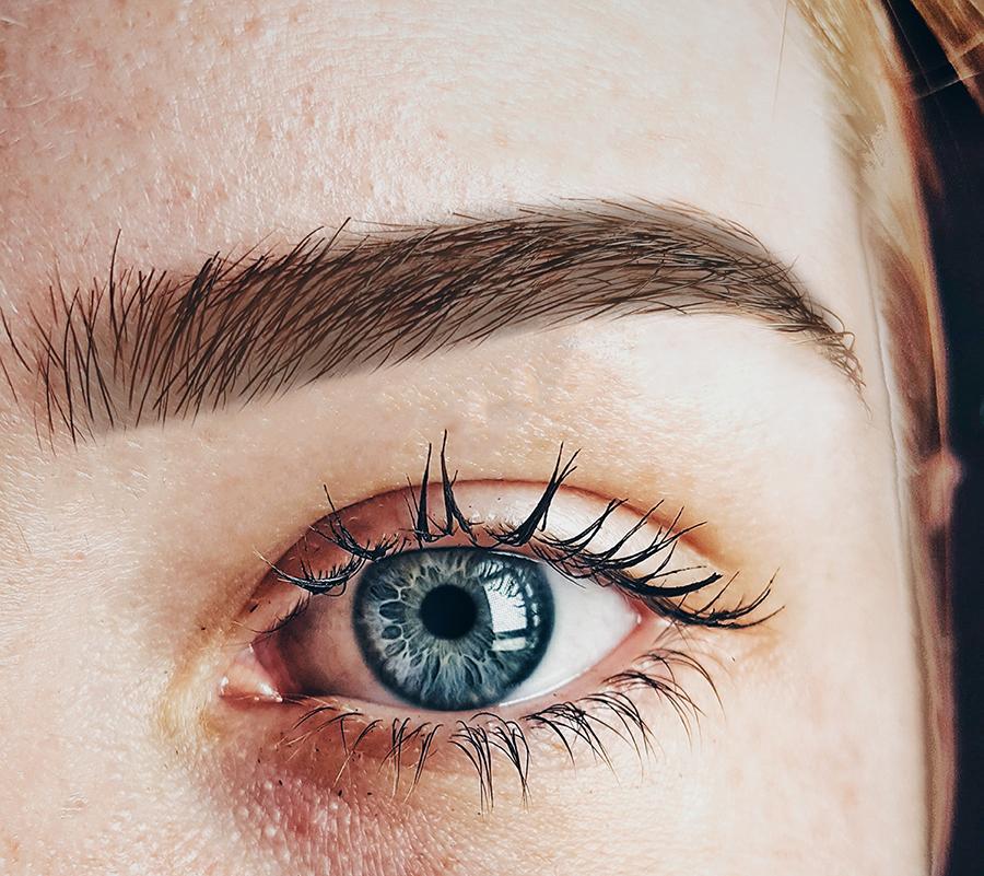 eyebrow tint & tidy